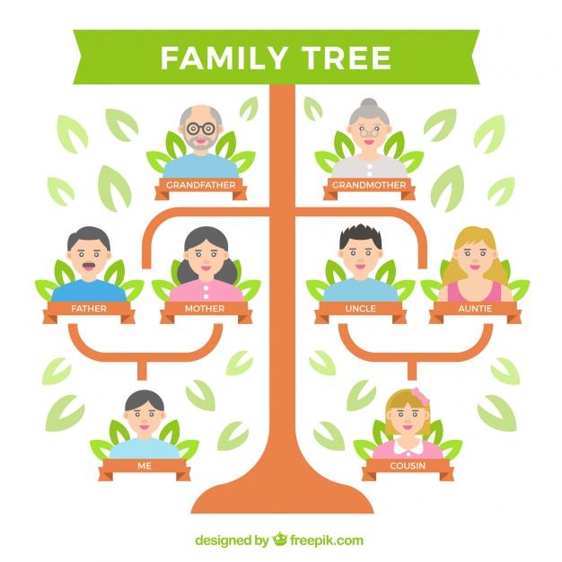 arvore-genealogica-plano-com-varias-geracoes_23-2147604287